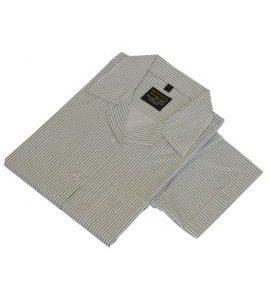 Grosvenor Grammar Short-Sleeved Striped Blouse